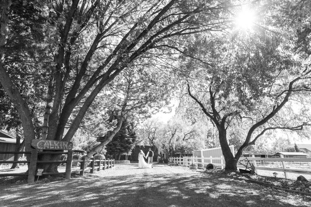 Spokane Wedding Photographer-35